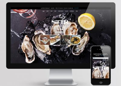 STIR Website