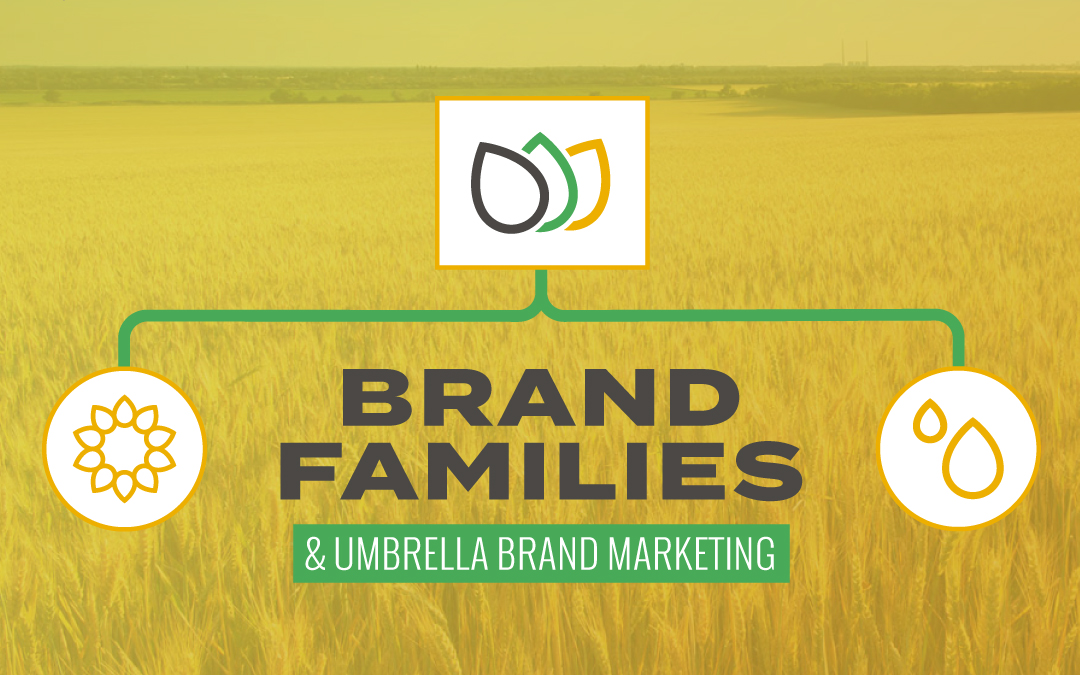 Brand Families and Umbrella Brand Marketing